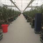 Abrasion Resistant Resin Flooring